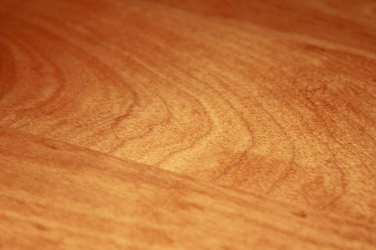 Holzschutz, Schimmelsanierung, Wasserschadensanierung, Bausanierung, Leckageortung